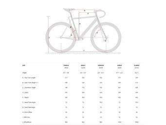 0031748_aventon-cordoba-fixie-single-speed-bike-black